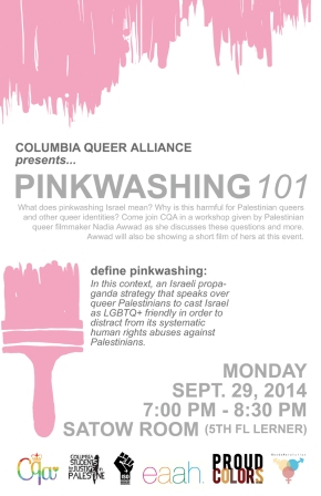 Queering Disability Discussion & Pinkwashing 101Event