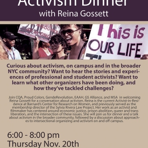 Asexuality Discussion & Activism Dinner